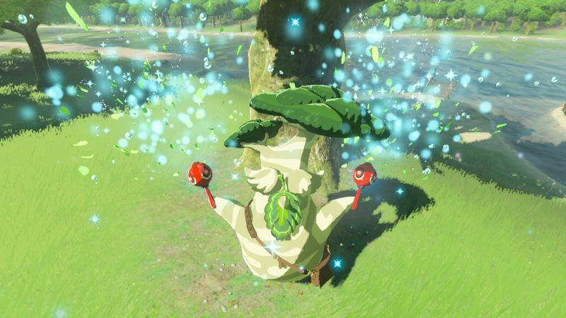 Jemand hat alle 900 Korok-Samen im neuen Zelda gesammelt