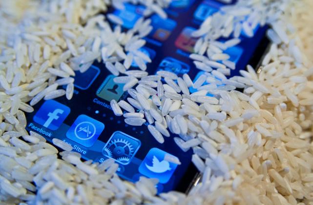 iphone rice