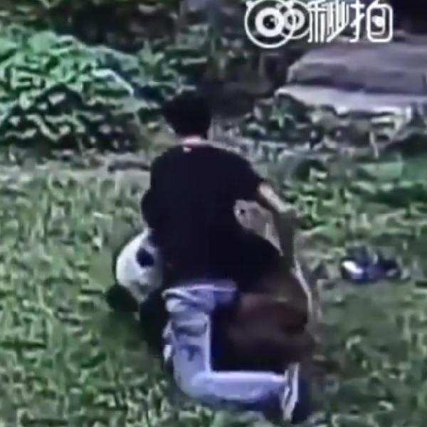 リアル異種格闘技!? ある男性がパンダにちょっかいを出すと思いもよらぬ展開に・・・