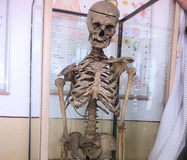 headmaster skeleton school