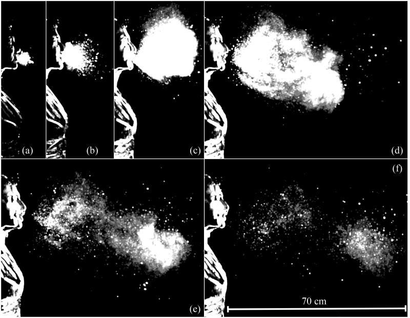 This sequence illustrates the evolution of the multiphase turbulence cloud that suspends droplets emitted during a sneeze. Shown here are times ranging from 7 to 340 milliseconds post sneeze onset.