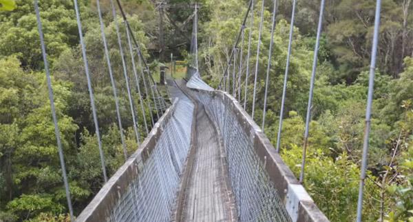 ファイナルデッドシリーズかよ!吊り橋を渡ってたら橋が途中でブッた切れる恐怖映像