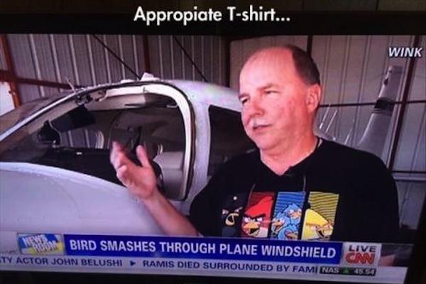 funny ironic photos, irony photos, ironic angry birds shirt