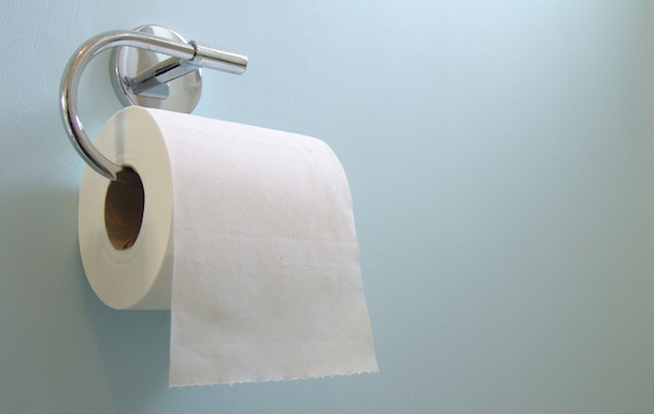 greatest things from every state, new york, toilet paper
