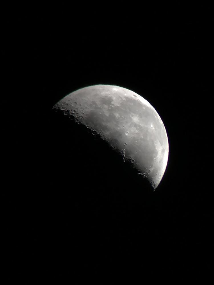 PANDA,月,撮影