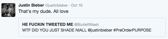 justin bieber one direction shade