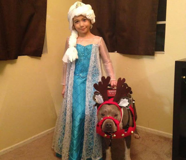 Santa sacked by shopping mall for refusing to meet autistic girl and her pit bull guide dog