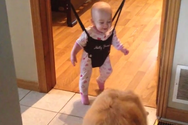 Cute bouncing baby finds jumping dog hilarious (video)