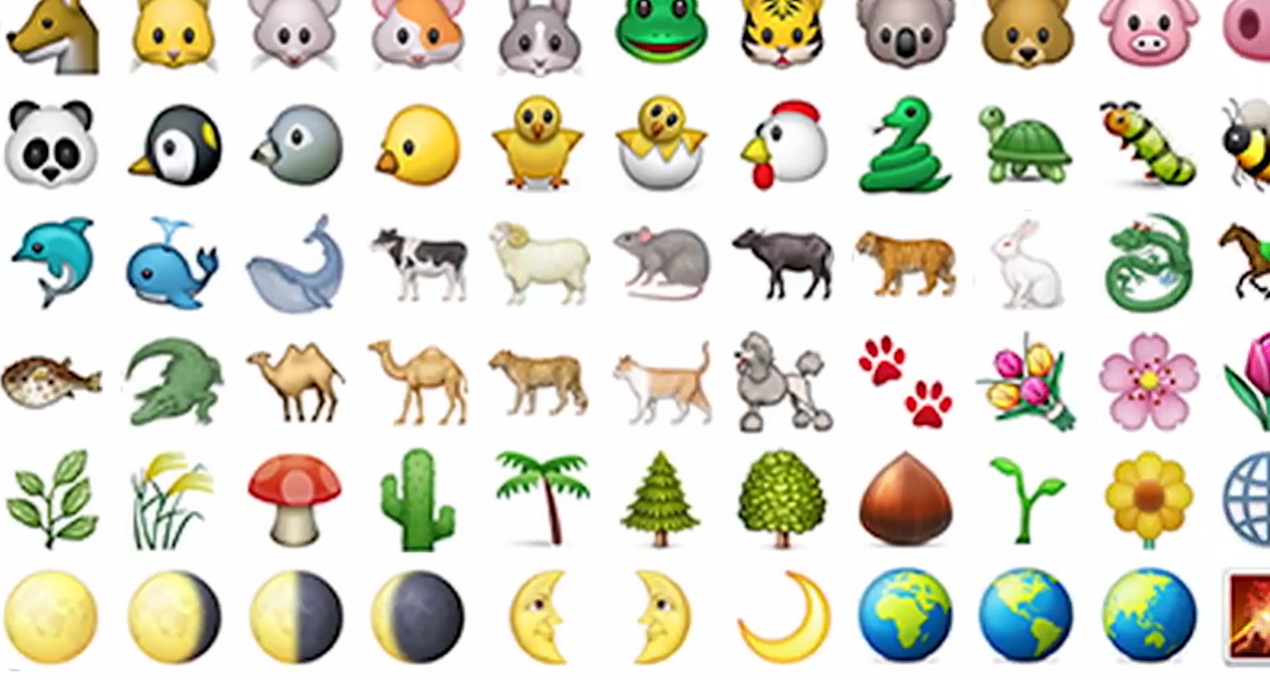 Watch: Emojis explained by clueless adults