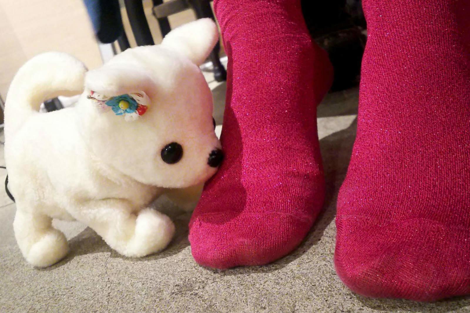 Porque solo ellos pueden: lanzan en Japón un perro robot que te huele los pies
