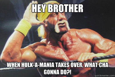 WWE 2K15 Hulkamania Edition, BROTHER!
