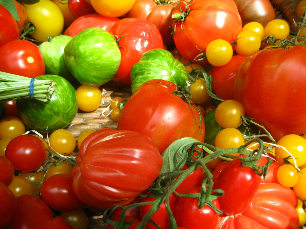 tomaten genetik konzentriert sich wieder auf den geschmack. Black Bedroom Furniture Sets. Home Design Ideas