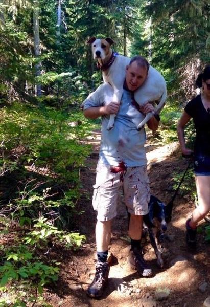 【男前すぎ!】ケガをした犬(30キロ)を担いで山道を歩いてくれた男性に称賛の声