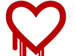 Heartbleed heart