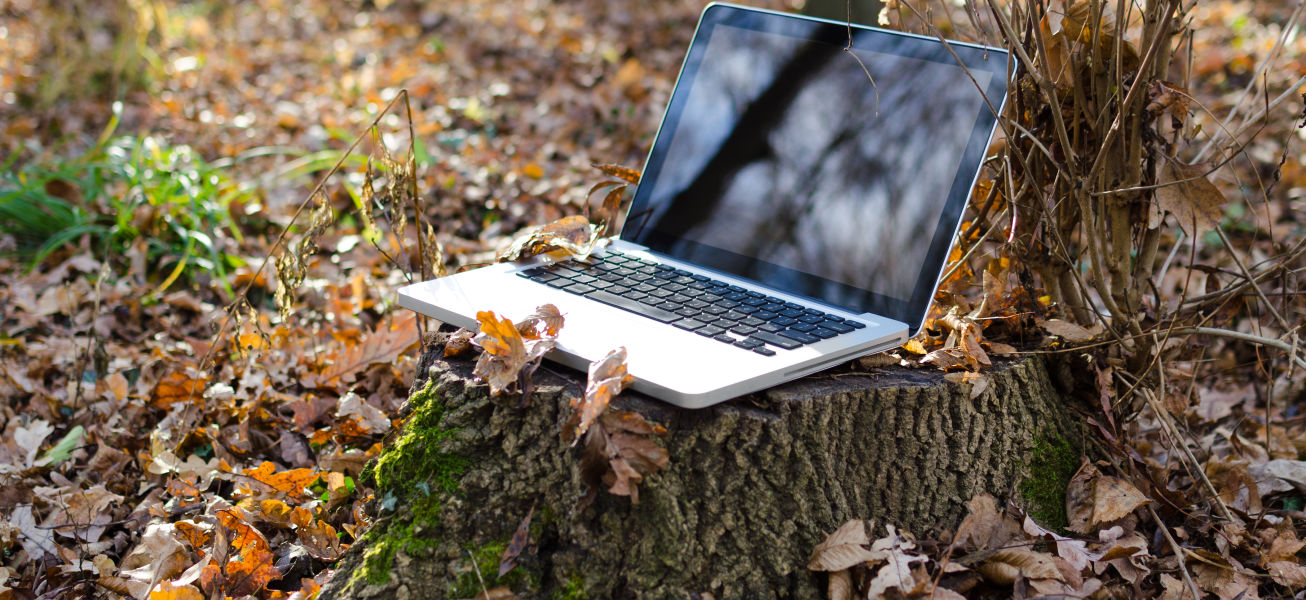 laptop-in-forest