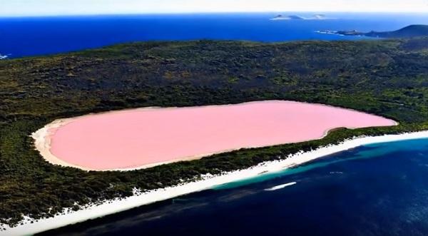 【嘘みたい!】鮮やかなピンク色をしたオーストラリアのヒリアー湖が話題に