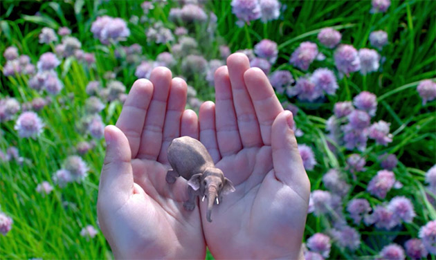 Here's what we know about Magic Leap so far
