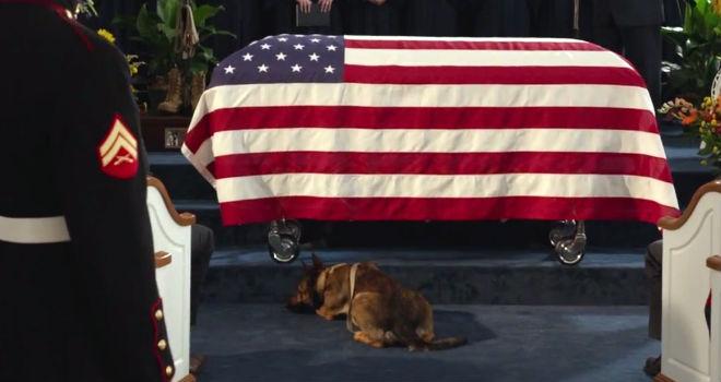 War Dog A Soldier S Best Friend Release Date