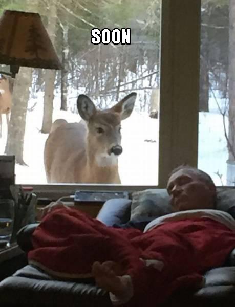 funny photos, mandatory.com