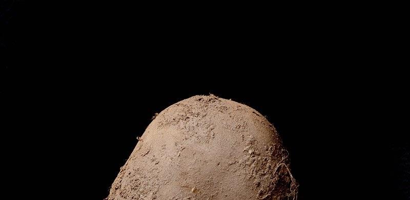 Sí, es la foto de una patata y se ha vendido por un millón de euros