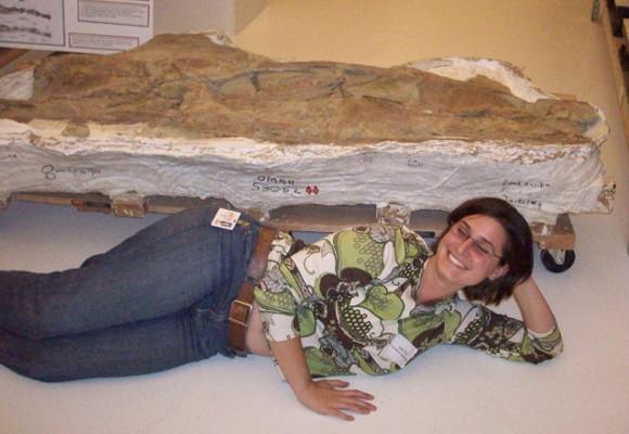 Sauroposeidon vertebra for scale