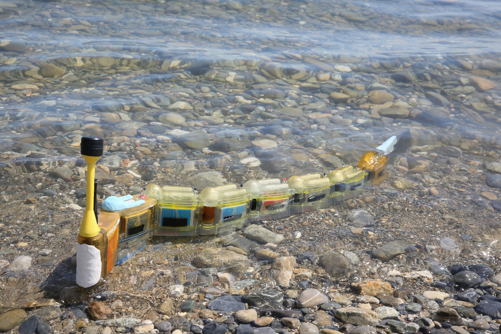 Modular robotic eel hunts for sources of water pollution