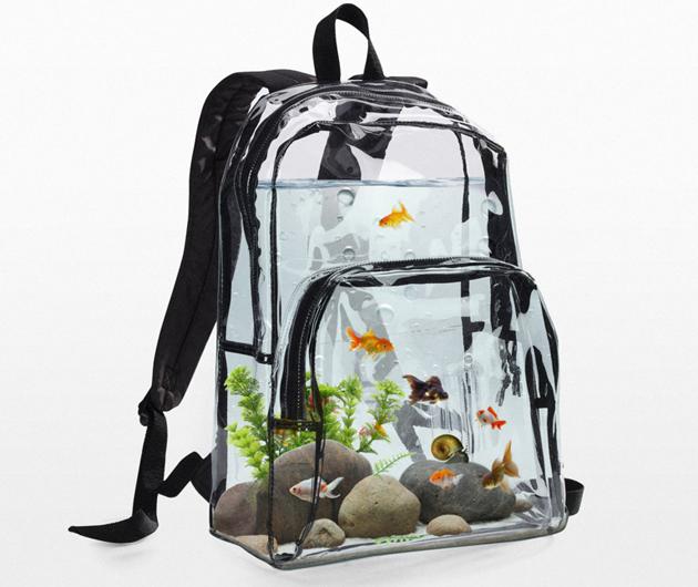 Aquarium-Rucksack revolutioniert Fisch-Tourismus