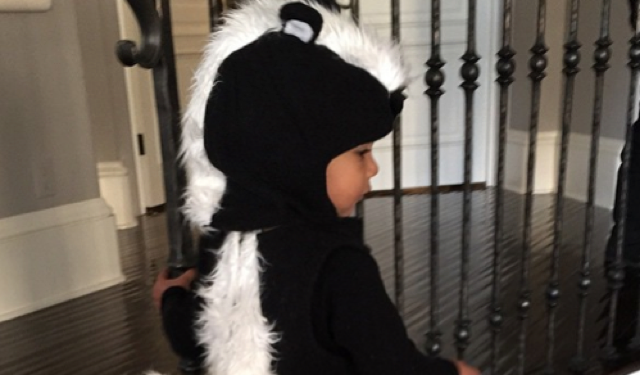 Kim Kardashian shares pic of North West's Halloween costume