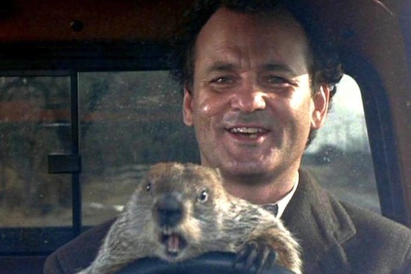 drinking toasts to make everyone love you, funny drinking toasts, phil connors groundhog day