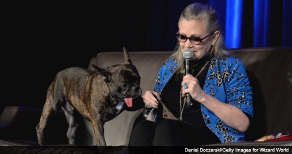 『スター・ウォーズ/最後のジェダイ』に、キャリー・フィッシャーの愛犬がモチーフのキャラクターが登場
