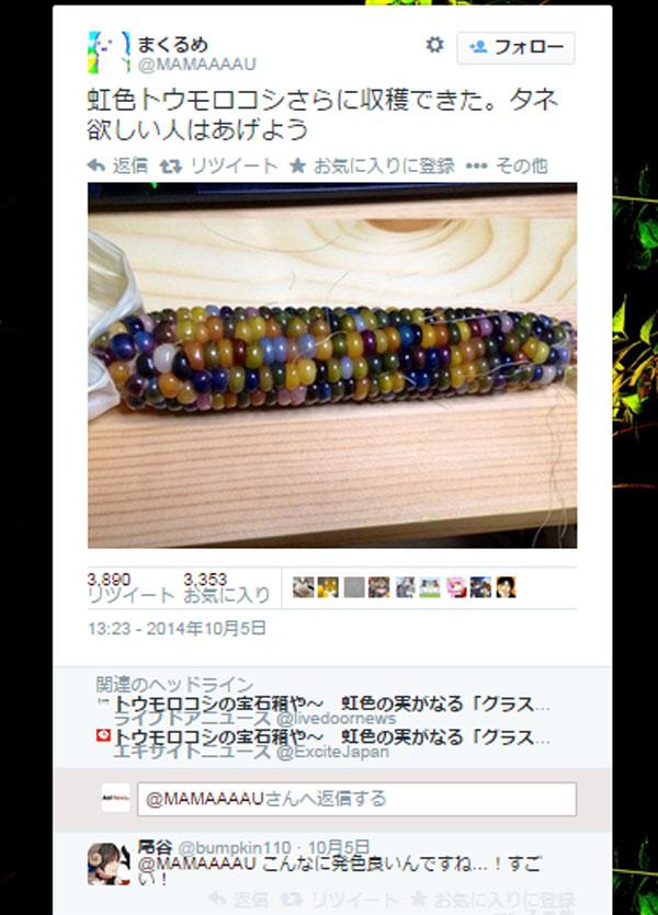 【閲覧注意】カラフルすぎてグロいトウモロコシがネット上で話題