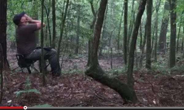 【動画】森の中で無邪気に遠吠えの真似をしてたらとんでもないことに…