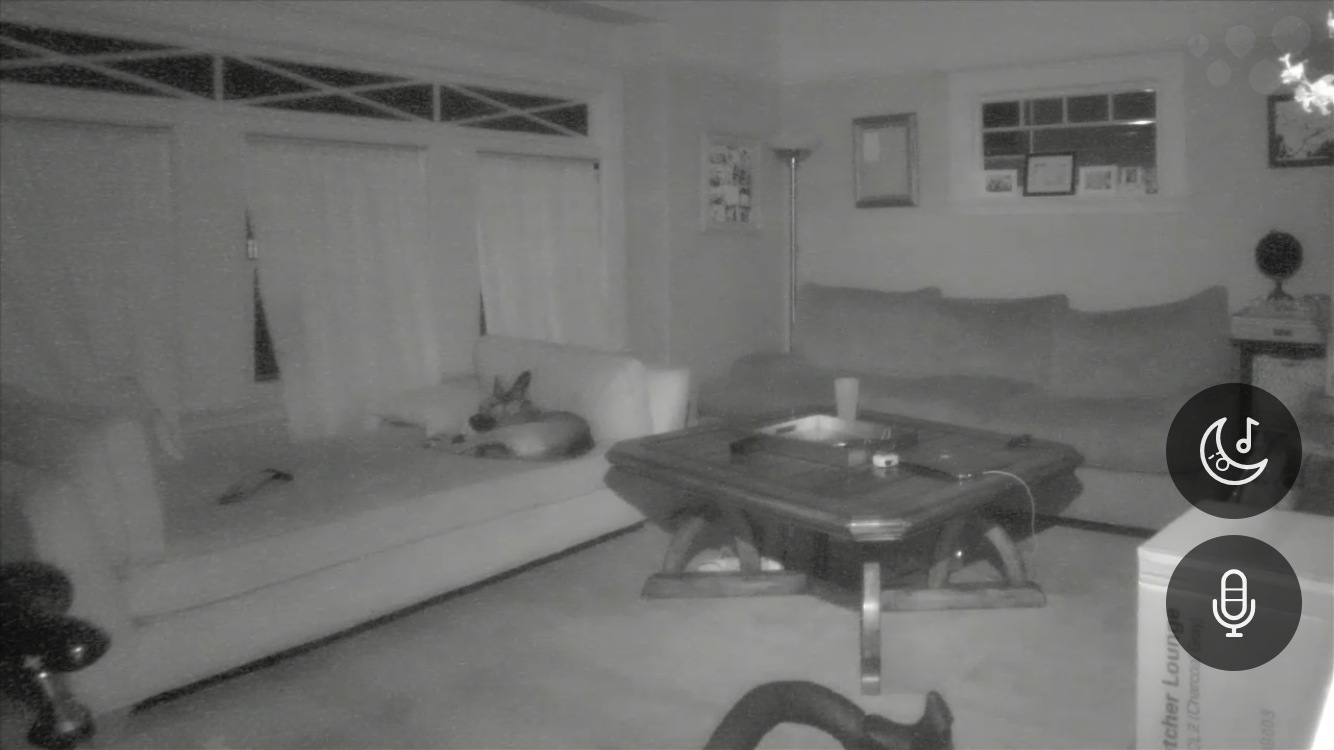 I got a connected surveillance camera, but used it mainly as a puppycam