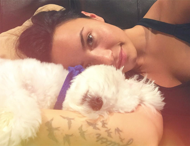 demi lovato dog killed by coyotes