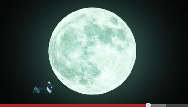 世界初?の衝撃映像が話題に 月を最も長い間見つめてきた「生きている化石」の生態