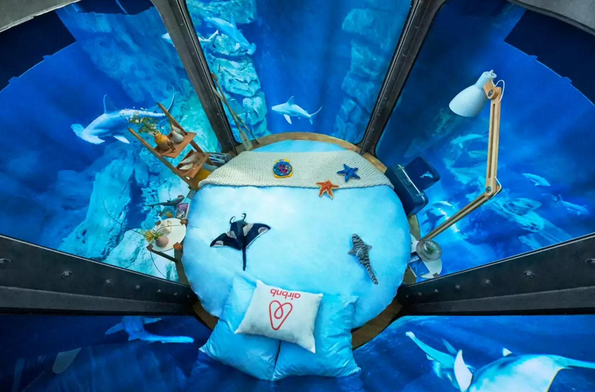 Airbnb te ofrece dormir bajo el agua rodeado de tiburones for Imagenes de hoteles bajo el agua