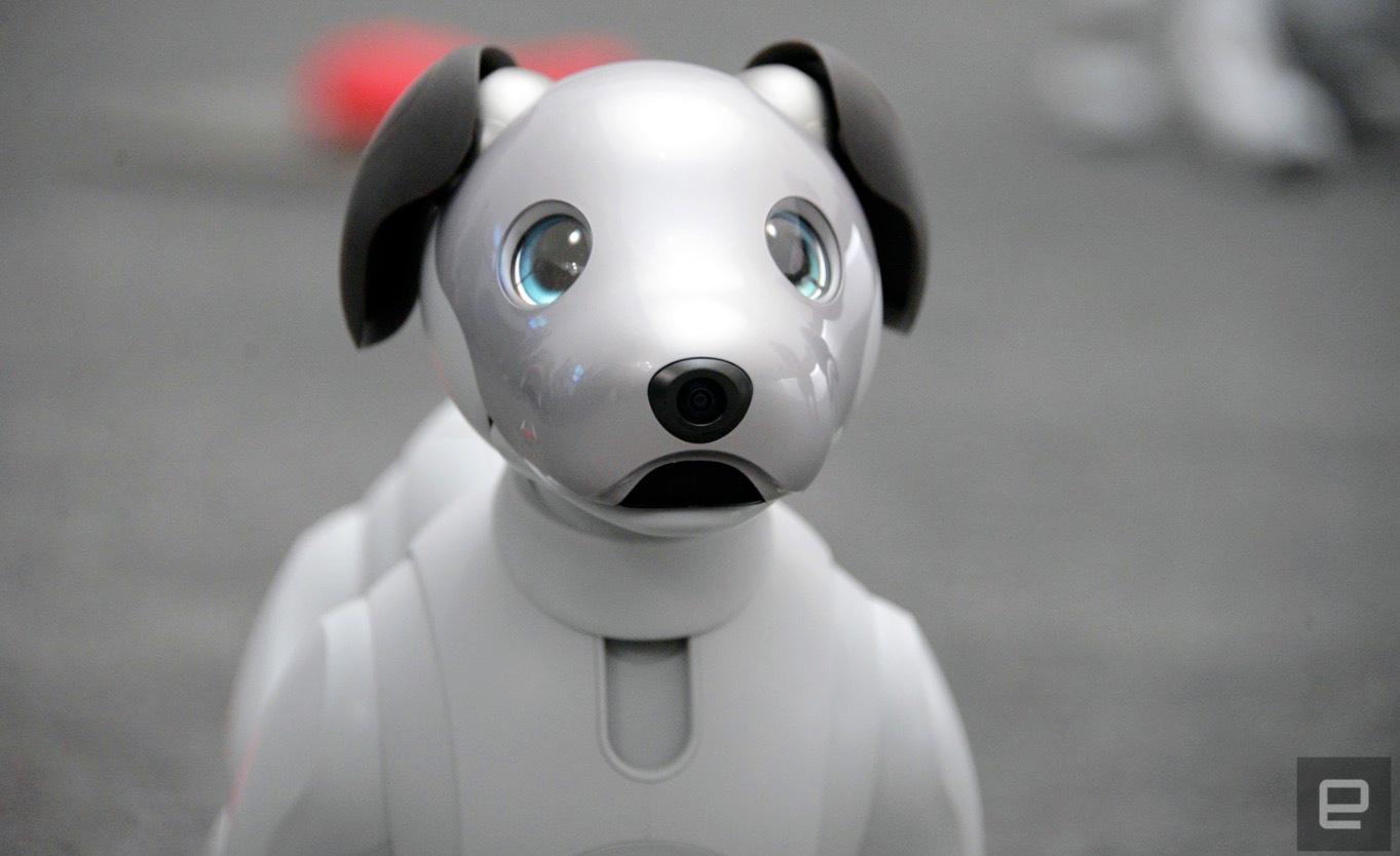 CES: Sonys Roboterhund süß wie eh und je, Anfassen verboten