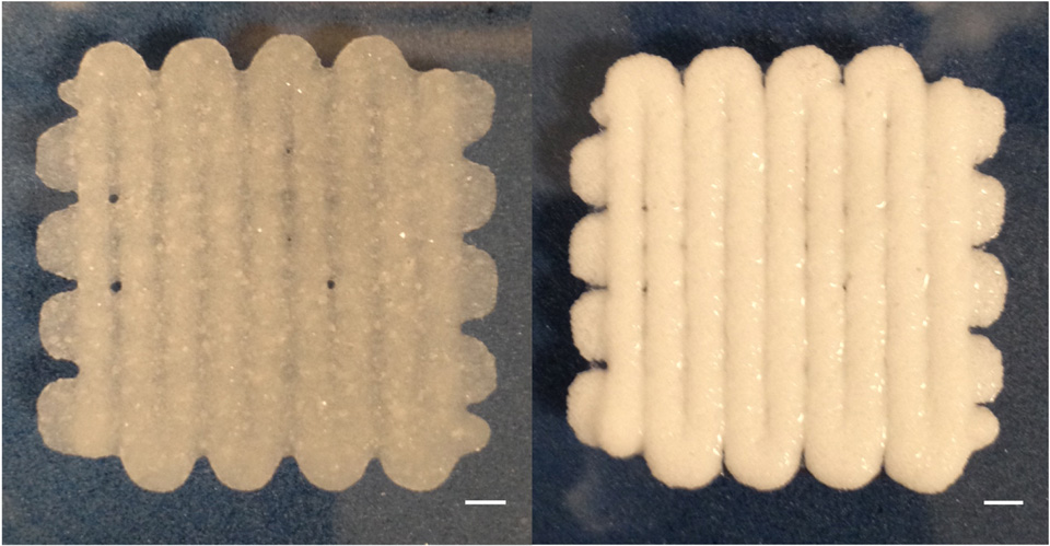Bioprinted 'dough'