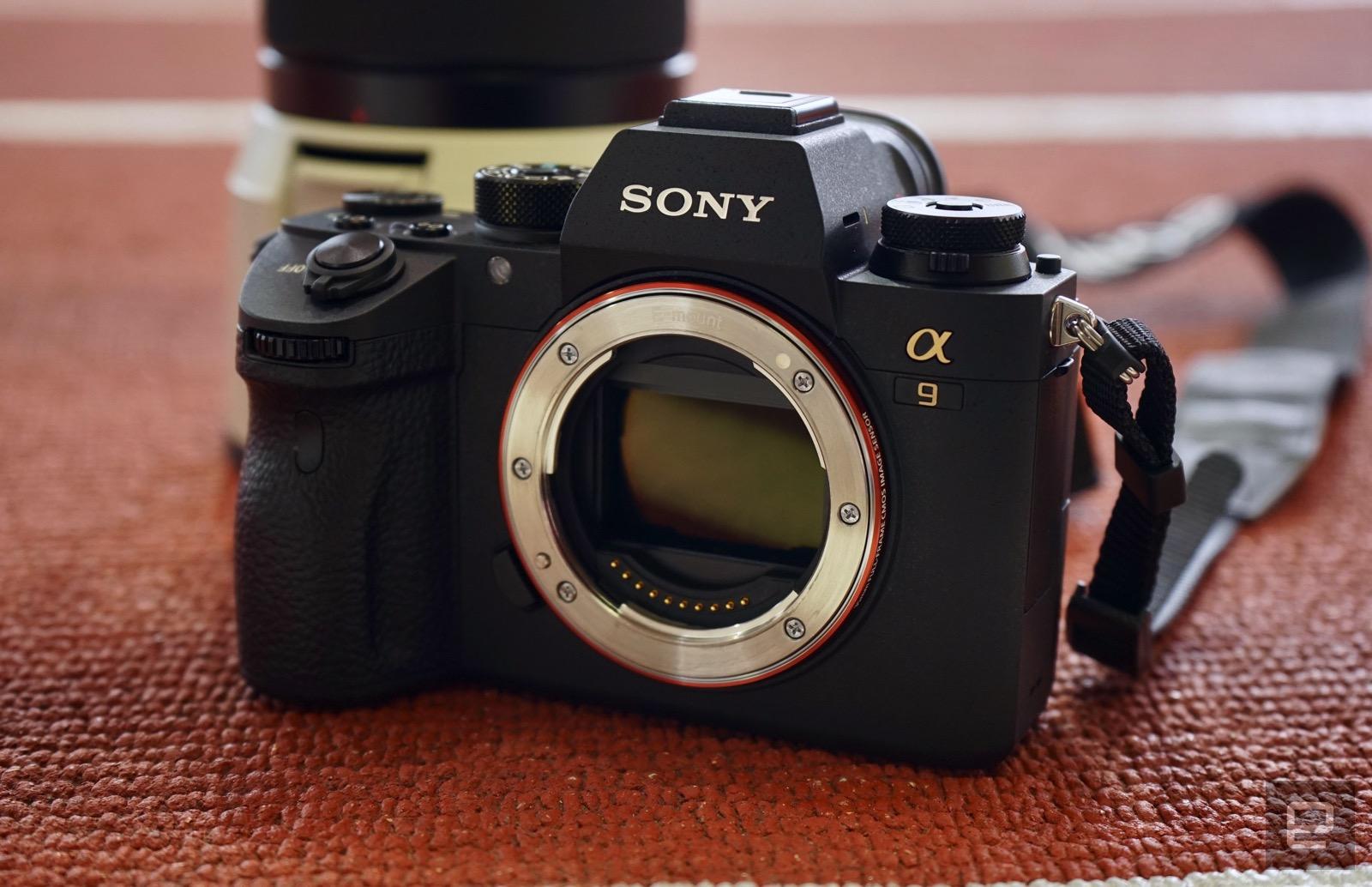 索尼 A9 全幅无反 24 小时实拍体验