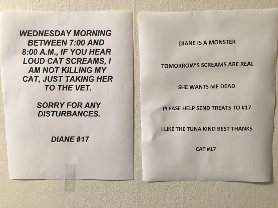 diane screaming cat note