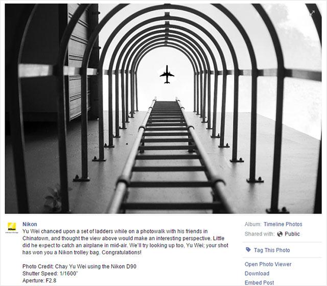 Esta foto 'photoshopeada' la lía ganando un premio de fotografía