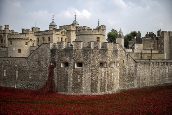 Tower of London Poppies Field Tower of London Poppies