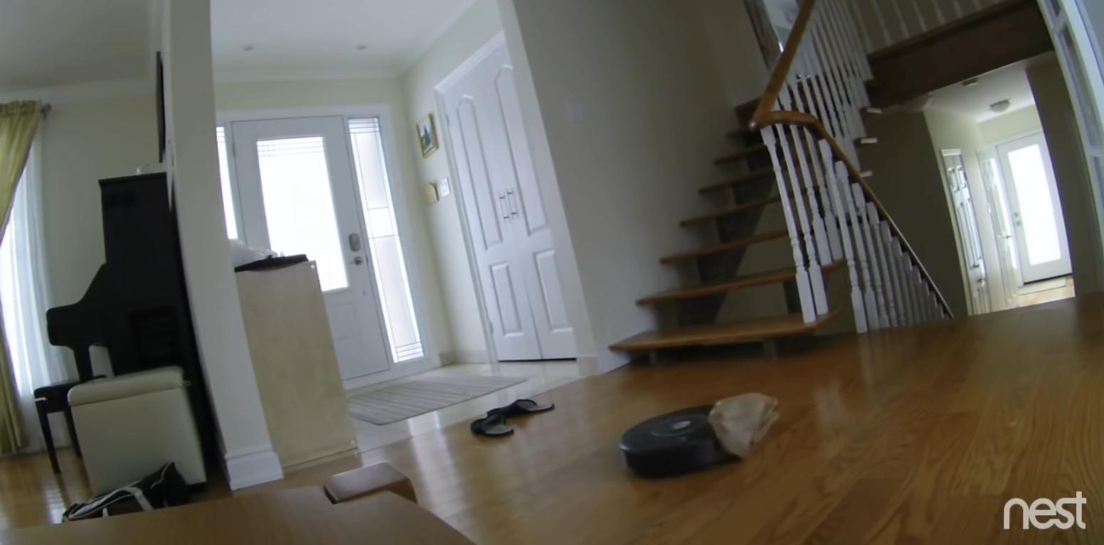 Zeitgeist-Drama: Nest-Kamera beobachtet Roomba-Selbstmord