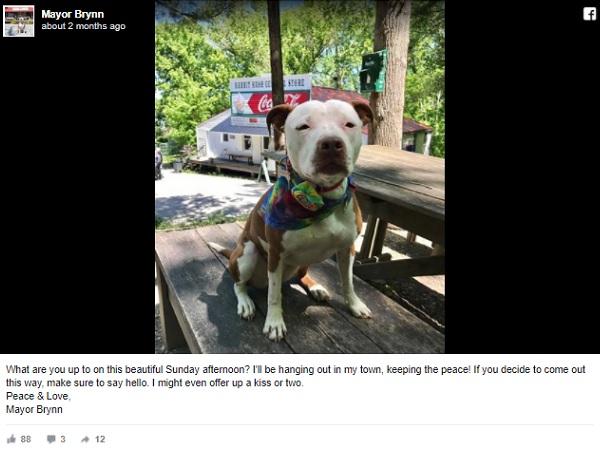 米国ケンタッキー州の小さな町に犬の新町長が誕生!