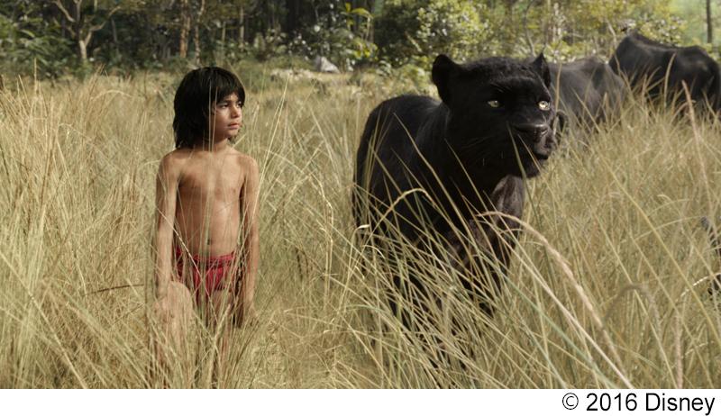 『ジャングル・ブック』リアルすぎる驚異のCG映像ができあがるまで・・・ MovieNEXボーナス映像到着!