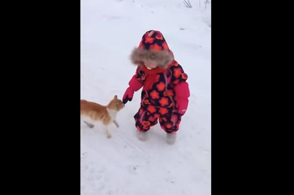 赤ちゃんとニャンコが雪の中を仲良くお散歩→衝撃の展開に【動画】