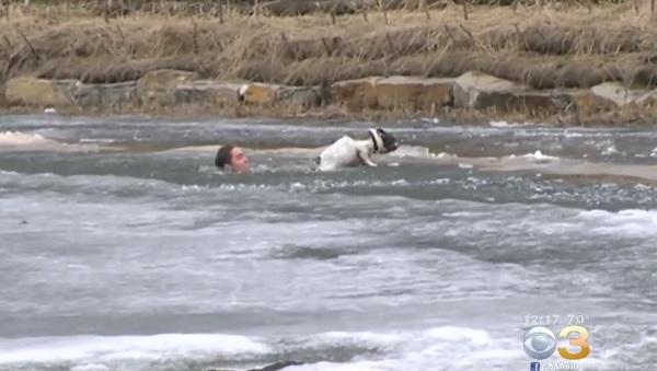 カナダ人男性が、凍てつく湖にダイブして飼い犬を救出!