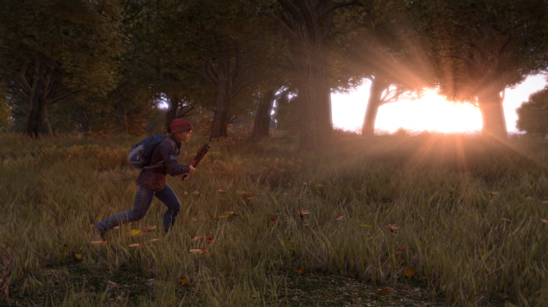 DayZ PC beta due in Q4 2015, console prototype in Q3