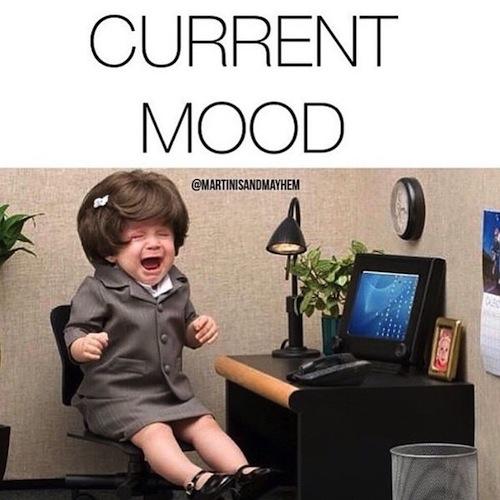 The 15 Funniest 'Current Mood' Memes - Mandatory