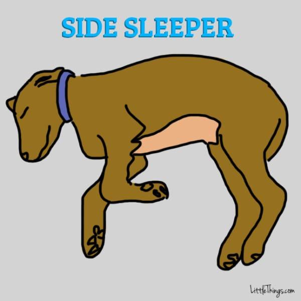 6 sleeping positions